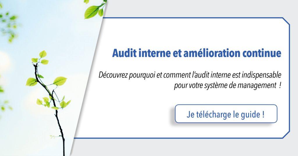 cta-qualix-guide-audit-interne
